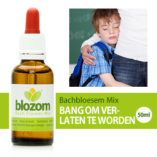 https://www.bachbloesemwinkel.be/images/productimages/big/bachbloesem-mix-verlatingsangst.png