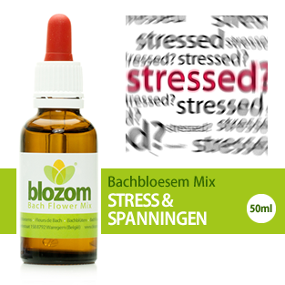 Bachbloesem Mix Stress
